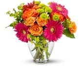 fayetteville florists flowers in fayetteville ny