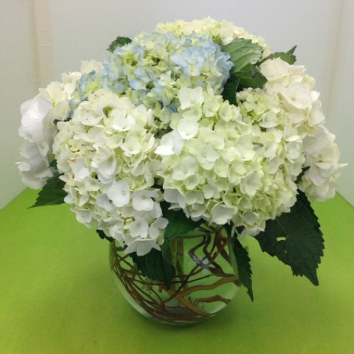 Manhasset Flowers Florist In Manhasset Ny Town