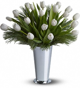 Tulips and Pine in New York NY, Primrose Florist, Inc.