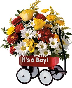 Teleflora's Baby's First Wagon - Boy in Metairie LA, Villere's Florist