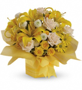 Teleflora's Sunshine Surprise Present in Stuart FL, Harbour Bay Florist