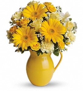 Teleflora's Sunny Day Pitcher of Cheer in Rochester NY, Red Rose Florist & Gift Shop