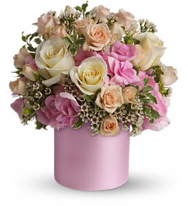 Teleflora's Blushing Beauty in Longmont CO, Longmont Florist, Inc.