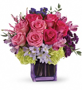 Exquisite Beauty by Teleflora in Oklahoma City OK, Capitol Hill Florist and Gifts