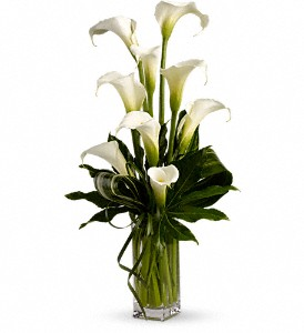 My Fair Lady by Teleflora in Kailua Kona HI, Kona Flower Shoppe