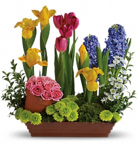 Spring Favorites in Newbury Park CA, Angela's Florist