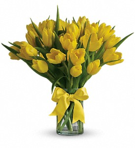 Sunny Yellow Tulips in Largo FL, Rose Garden Flowers & Gifts, Inc
