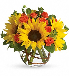 Sunny Sunflowers in Thornhill ON, Wisteria Floral Design