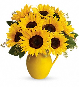 Teleflora's Sunny Day Pitcher of Sunflowers in Kinston NC, The Flower Basket