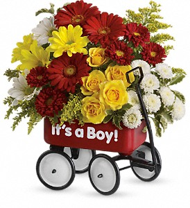 Baby's Wow Wagon by Teleflora - Boy in Naples FL, Gene's 5th Ave Florist