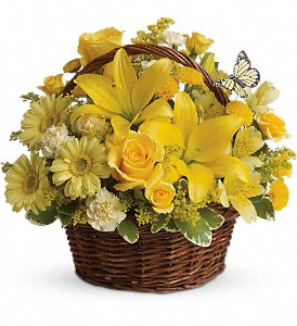 Basket Full of Wishes in Flushing NY, Four Seasons Florists