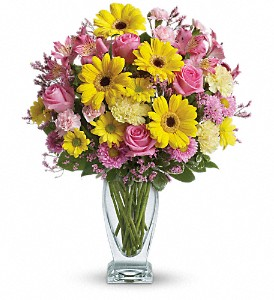 Teleflora's Dazzling Day Bouquet in West Chester OH, Petals & Things Florist
