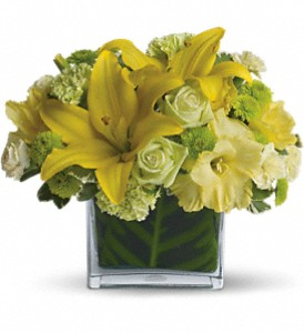 Oh Happy Day by Teleflora in Kirkland WA, Fena Flowers, Inc.