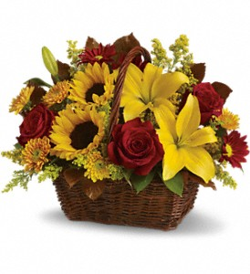 Golden Days Basket in Harlan KY, Coming Up Roses
