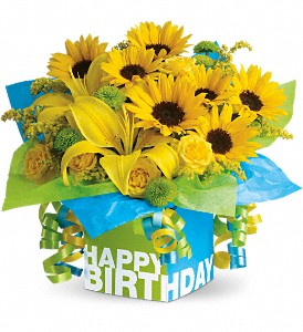Teleflora's Sunny Birthday Present in Baltimore MD, Raimondi's Flowers & Fruit Baskets