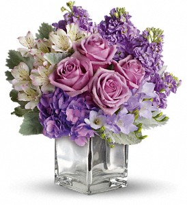 Sweet as Sugar by Teleflora in San Leandro CA, East Bay Flowers