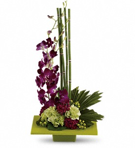 Zen Artistry in Ft. Lauderdale FL, Jim Threlkel Florist