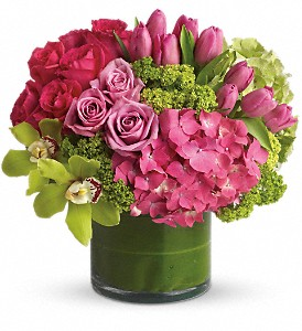 New Sensations in Oklahoma City OK, Capitol Hill Florist & Gifts