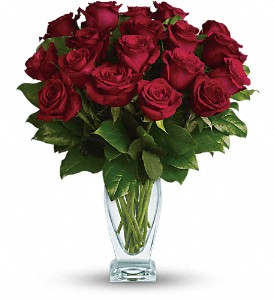 Teleflora's Rose Classique - Dozen Red Roses in San Francisco CA, A Mystic Garden
