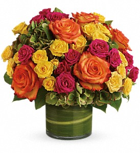 Blossoms in Vogue in Bellevue WA, Lawrence The Florist