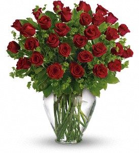 My Perfect Love - Long Stemmed Red Roses in Battle Creek MI, Swonk's Flower Shop