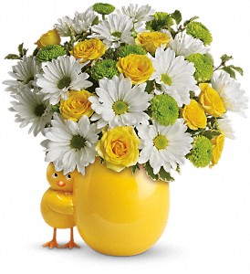 My Little Chickadee by Teleflora in Laurel MD, Rainbow Florist & Delectables, Inc.