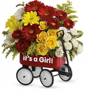 Baby's Wow Wagon by Teleflora - Girl in Conway AR, Ye Olde Daisy Shoppe Inc.