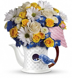 Teleflora's Peek-a-Bird Bouquet in San Antonio TX, Flowers By Grace