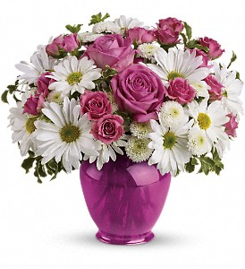 Teleflora's Pink Daisy Delight in Oklahoma City OK, Array of Flowers & Gifts