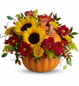 Teleflora's Pretty Pumpkin Bouquet in Lufkin TX, Bizzy Bea Flower & Gift