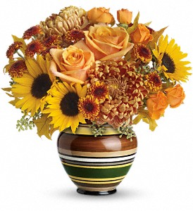 Teleflora's Harvest Stripes Bouquet in Elkin NC, Ratledge Florist