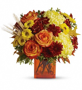Teleflora's Autumn Expression in DeKalb IL, Glidden Campus Florist & Greenhouse