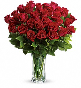 Love and Devotion - Long Stemmed Red Roses in San Francisco CA, Fillmore Florist