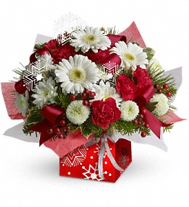 Teleflora's Winter Snowflake Present Perfect in Vienna VA, Vienna Florist & Gifts