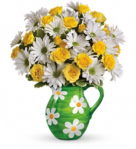 Teleflora's Happy Daisies Bouquet in Arizona, AZ, Fresh Bloomers Flowers & Gifts, Inc