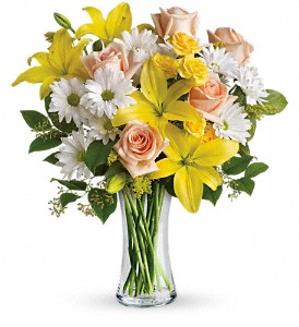 Teleflora's Daisies and Sunbeams in Glen Cove NY, Capobianco's Glen Street Florist