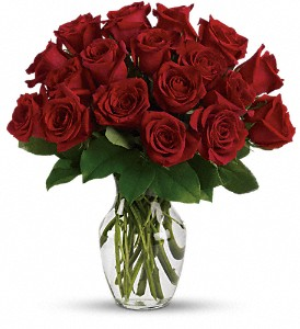 Enduring Passion - 12 Red Roses in Jacksonville FL, Deerwood Florist