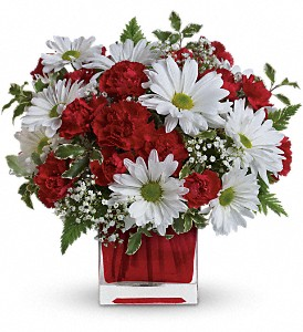 Red And White Delight by Teleflora in Natchez MS, Moreton's Flowerland