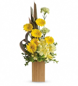 Sunbeams And Smiles by Teleflora in Milford MI, The Village Florist