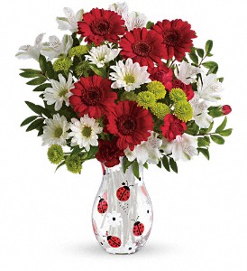 Teleflora's Lovely Ladybug Bouquet in Tillsonburg ON, Margarets Fernlea Flowers & Gifts