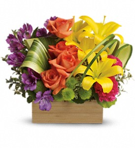 Teleflora's Shades Of Brilliance Bouquet in San Leandro CA, East Bay Flowers