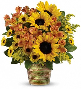 Teleflora's Grand Sunshine Bouquet in North York ON, Ivy Leaf Designs