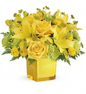 Teleflora's Sunny Mood Bouquet in Jamesburg NJ, Sweet William & Thyme