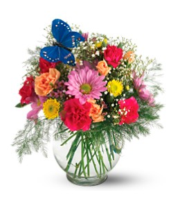 Teleflora's Butterfly & Blossoms Vase Local and Nationwide Guaranteed Delivery - GoFlorist.com