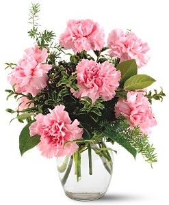 Teleflora's Pink Notion Vase in Gothenburg NE, Ribbons & Roses
