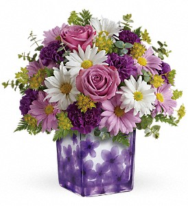 Teleflora's Dancing Violets Bouquet in Kingsville TX, The Flower Box