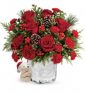 Send a Hug Winter Cuddles by Teleflora in Rochester NY, Red Rose Florist & Gift Shop
