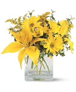 Teleflora's Clear Day Bouquet Local and Nationwide Guaranteed Delivery - GoFlorist.com