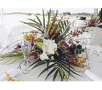 Orchid Centerpiece in Largo FL, Rose Garden Flowers & Gifts, Inc