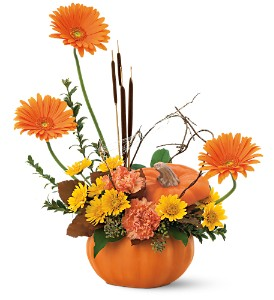 Autumn Pumpkin in Fredericksburg VA, Finishing Touch Florist